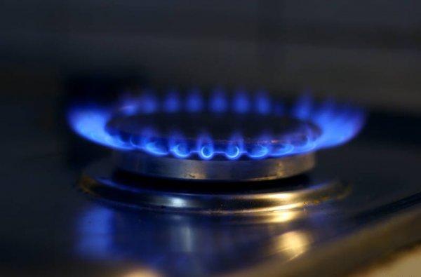Ученые придумали, как добывать газ из органических отходов