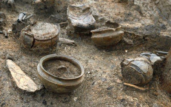 Археологи нашли на Оркнейских островах 2000-летнюю деревянную чашу