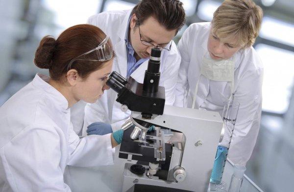 Ученые сообщили, что нетрадиционная медицина уменьшает выживаемость онкобольных