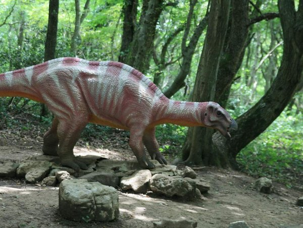 В Кузбассе обнаружили гигантский позвонок динозавра