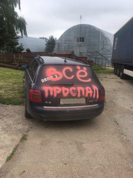 В Смоленске ночью вандалы расписали несколько автомобилей