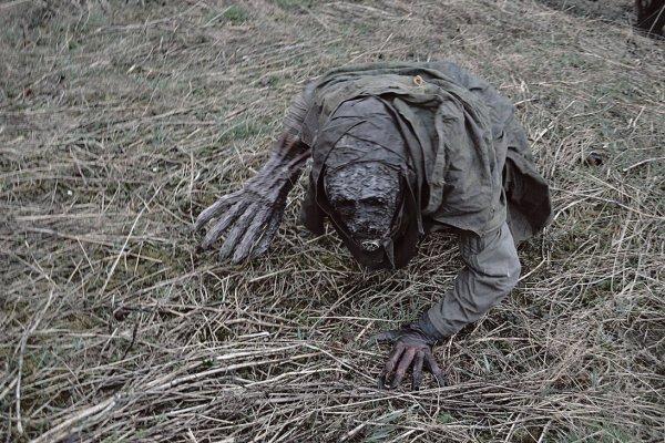 STALKER наяву: Очевидец заснял бежавшего по Чернобылю мутанта