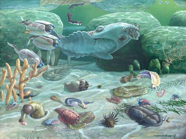 Ученые обнаружили древнейшие свидетельства жизни на Земле