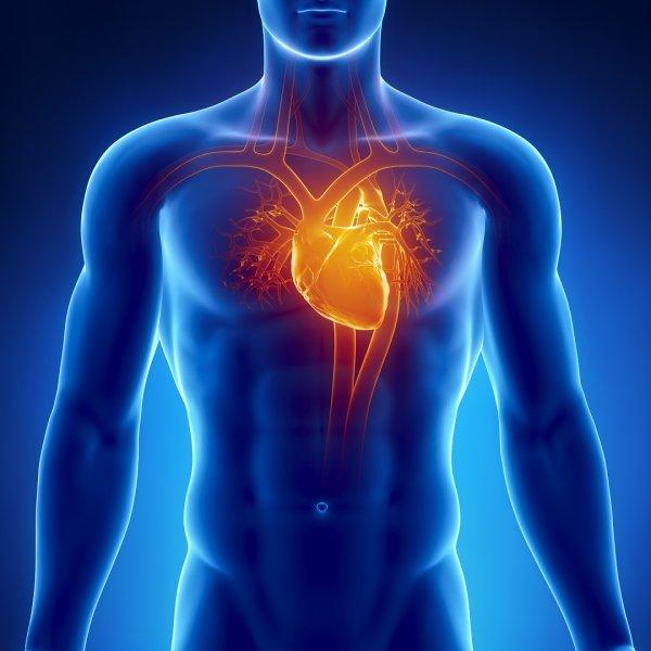 Ученые: Физическая активность поможет пенсионерам снизить риск сердечных заболеваний