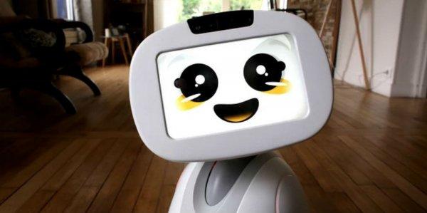 Учёные создали самообучающегося робота-ребёнка