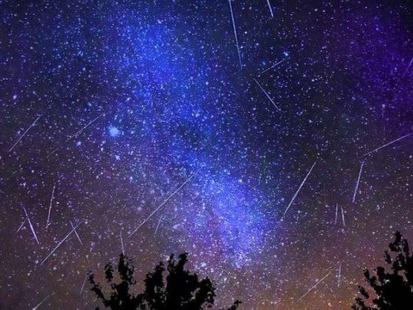 Руководитель планетария рассказал, откуда лучше наблюдать метеорный поток