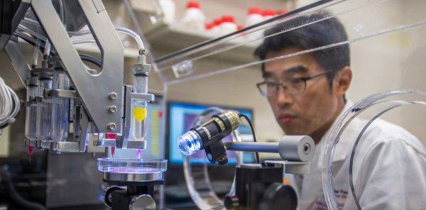 Химики разработали стираемый материал для 3D-принтера
