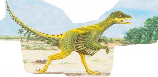 В Китае обнаружили два вида необычных динозавров