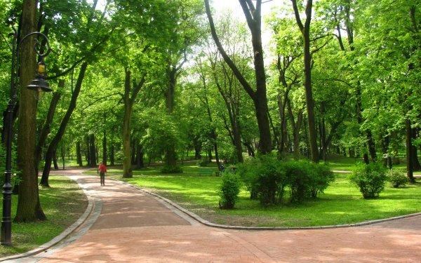 Ученые: Проживание возле парков снижает вероятность рака груди