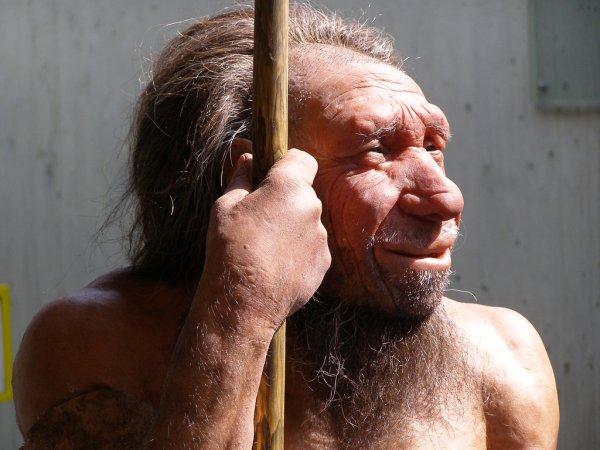 Учёные: Изменения климата помогли Homo sapiens вытеснить неандертальцев