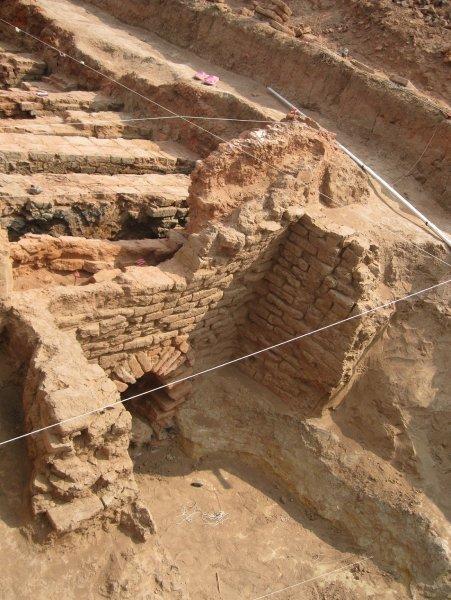 Астраханские студенты во время раскопок нашли панцирь черепахи, жившей в X-XI веке