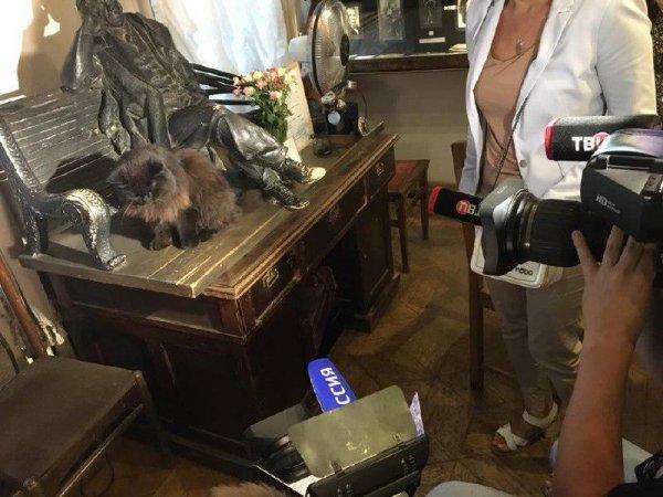 Всё это инсценировка: Лена Миро раскрыла тайну кражи кота Бегемота из музея Булгакова
