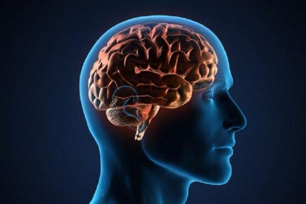 Ученые: Холод негативно отражается на памяти человека
