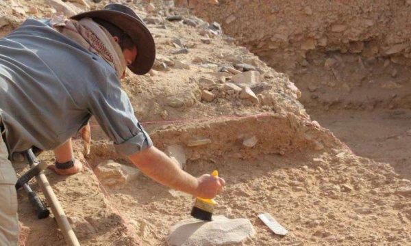 Ученые смогли понять, как появились первые орудия труда