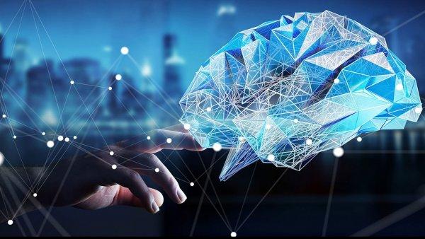 Учёные: В мозге найден отдел, отвечающий за стирание памяти
