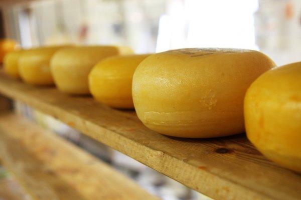 Минсельхоз хочет запретить сыр, сделанный не из молока