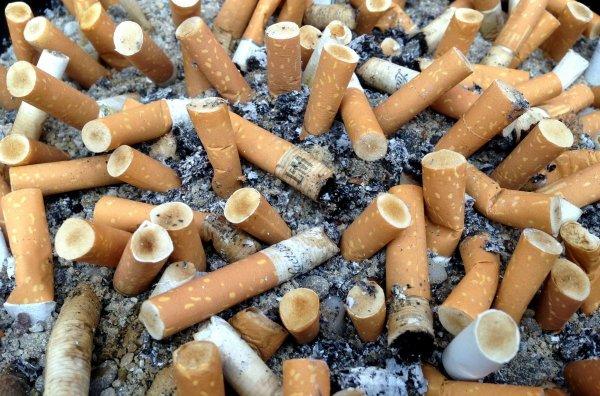 Ученые: курящие отцы снижают IQ у своего будущего потомства
