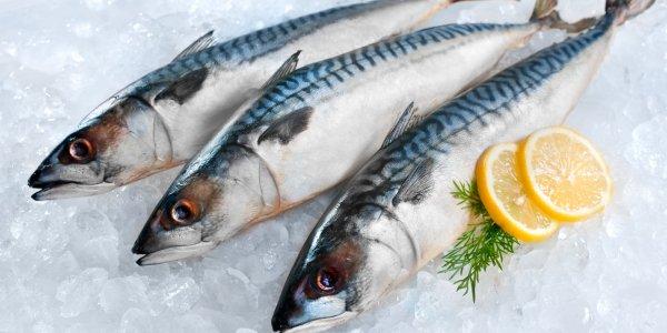 Бороться со слабоумием можно с помощью употребления масляной рыбы – учёные