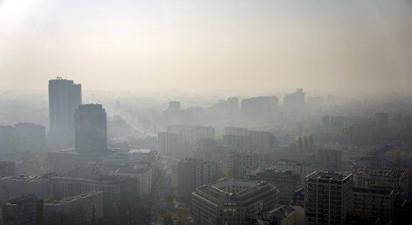 Загрязнение воздуха повышает риск умственной отсталости у детей  - учёные