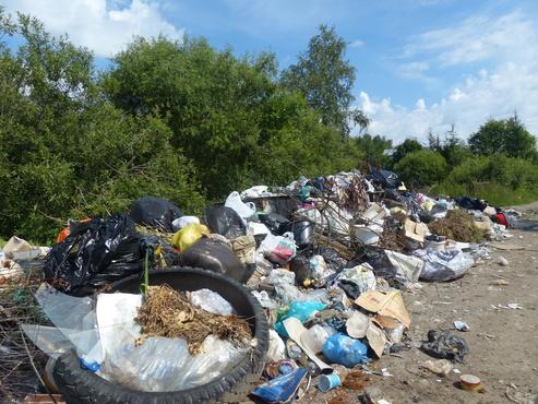 Чего ждать от мусорной реформы
