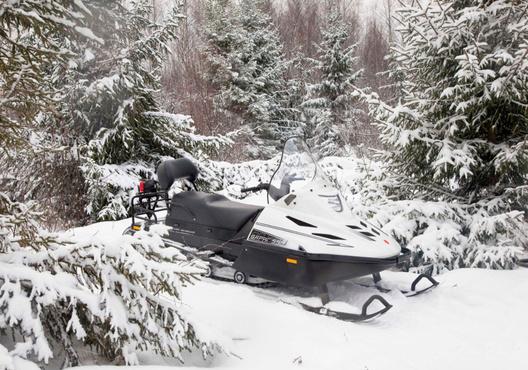 В Югре молодые люди, у которых заглох снегоход, почти сутки провели в тайге