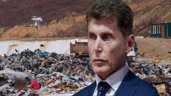 Минус экология, плюс астма? Власти Владивостока объявили тендер на мусоросжигательный завод вопреки предыдущим обещаниям